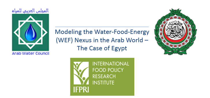 "Special Event: ""Modeling the Water-Food-Energy (WEF) Nexus in the Arab World"" – The Case of Egypt"