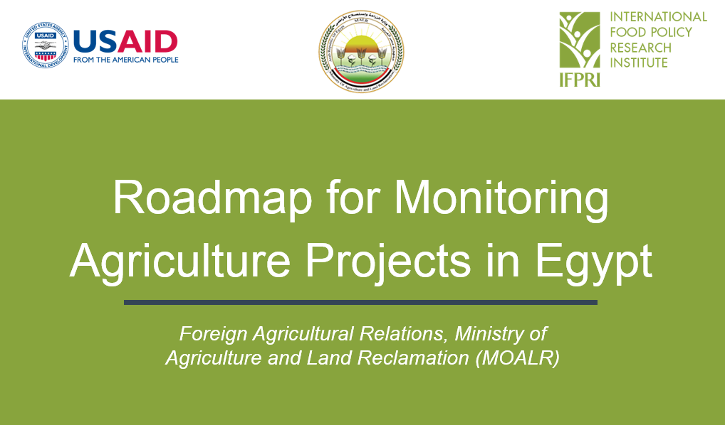 Special Event: Roadmap for Monitoring Agriculture Projects in Egypt