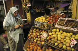 Forthcoming Publication: IFPRI Book on Nutrition and Economic Development in Egypt
