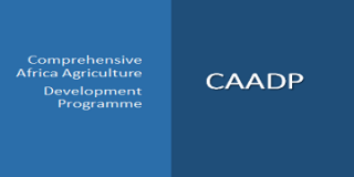 Is CAADP Having the Desired Impact on Agricultural-led Development?