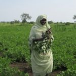 Building Resilience through Women Farmers: A Local Grassroots NGO's Perspective
